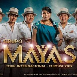 @grupo-mayas